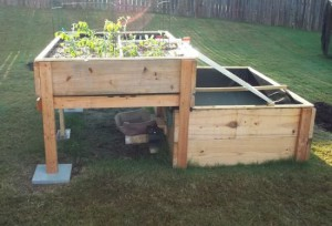 DIY-Backyard-Aquaponics-System_1