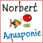 Norbert Aquaponie